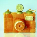 camera orangee