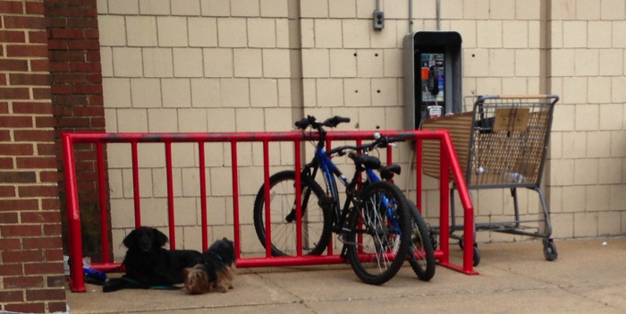 It's a bike rack not a dog rack. Please park your dogs in the dog parking area.