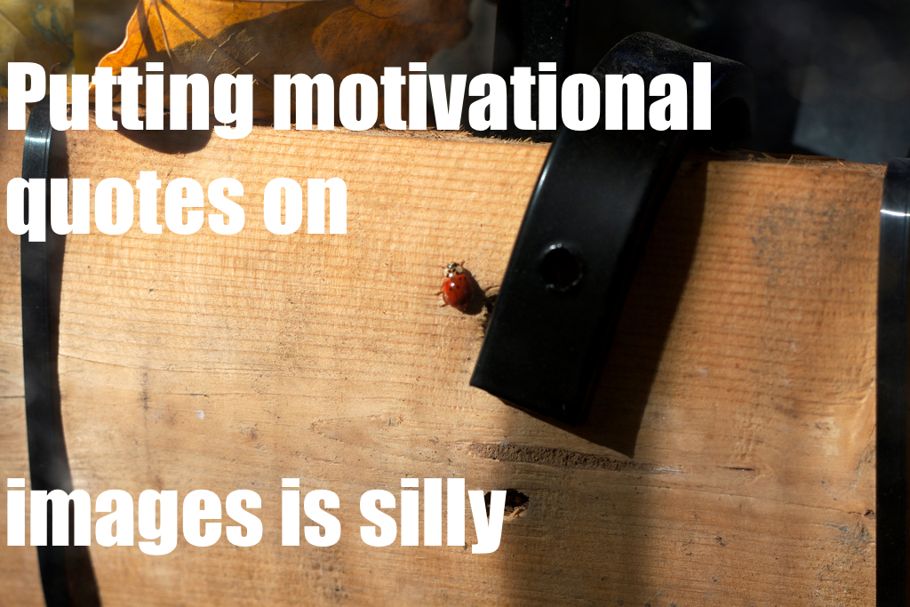 Putting motivational quotes on images is silly.